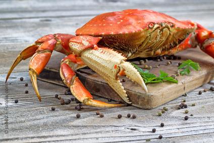 Les images 2 renata pour apprendre dessiner ou tout - Dessiner un crabe ...